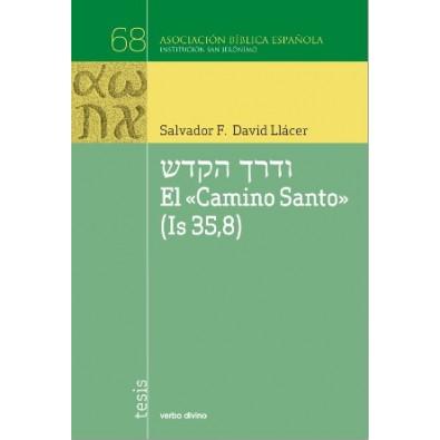 """El Camino Santo"""" (Is 35, 8)"""